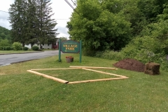 The shape of things to come for Margaretville's first wildflower garden