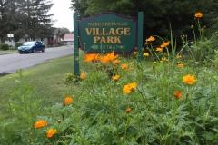 Margaretville wildflower garden August 7, 2020