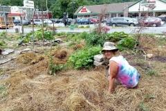 Kelley Edkins tending plants